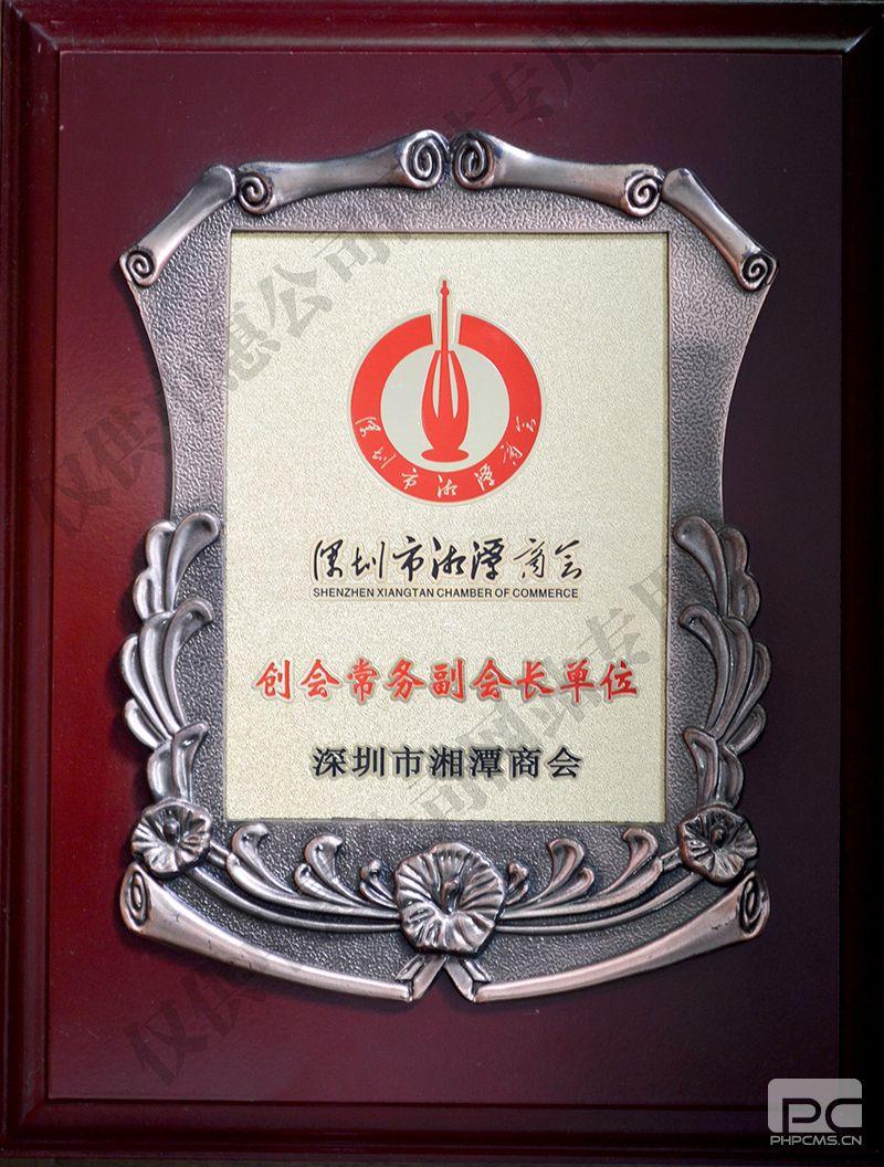 深圳市湘潭商会-创会副会长单位